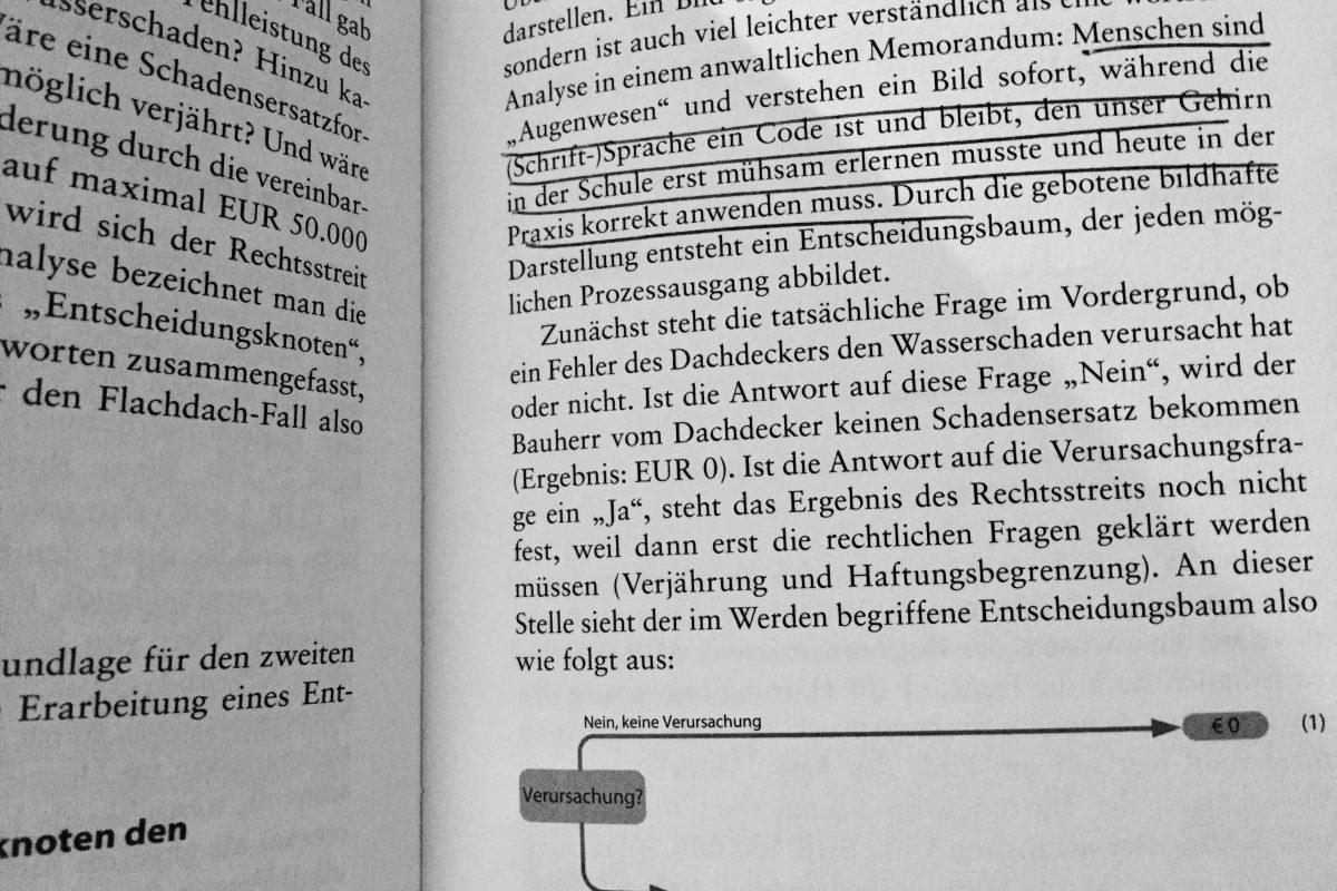 """Rezension zu """"Prozessrisikoanalyse"""" von Risse und Morawietz"""